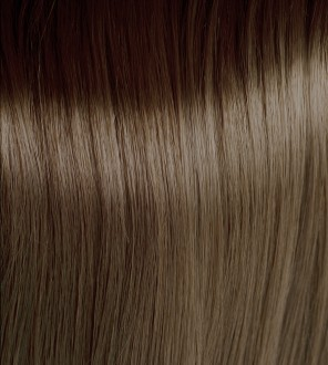 Intense Ash Light Blonde 8.11