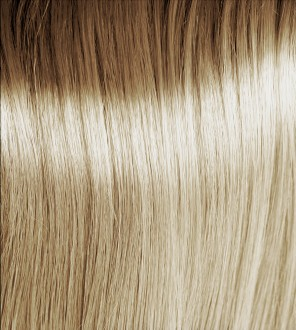Lightest Ash Blonde 10.1