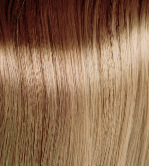 Very Light Natural Ash Golden Blonde 9.13